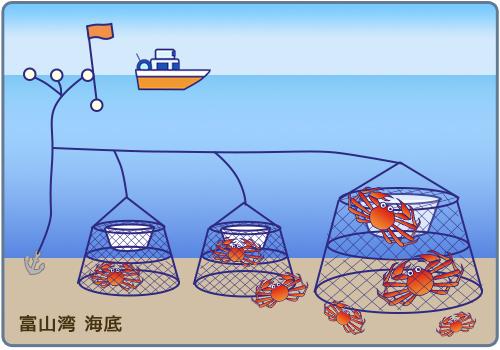 かごなわ漁業