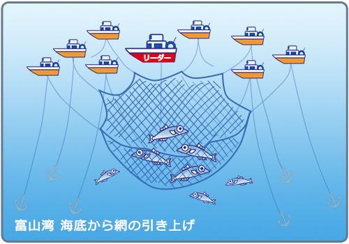 敷網(八そう張網)漁業