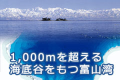 富山湾の紹介