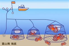 富山湾の漁法